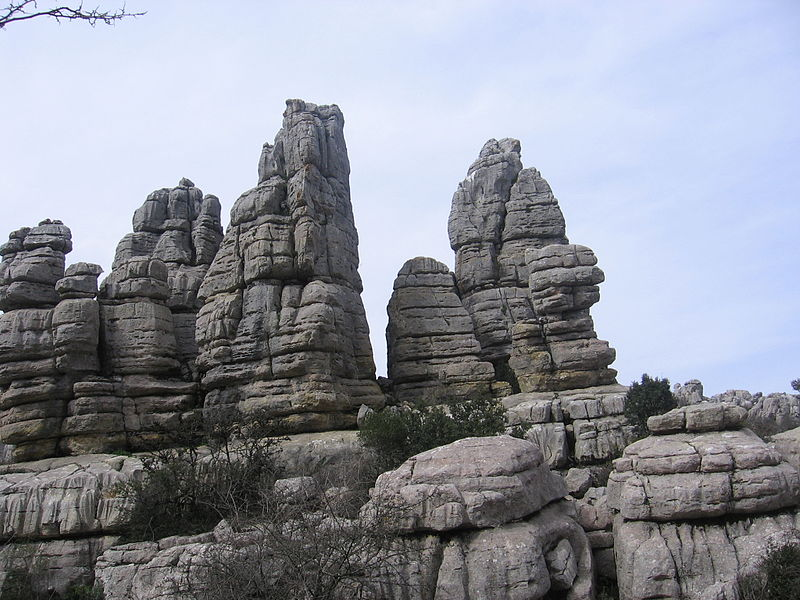 Bosque torcal de Antequera en España