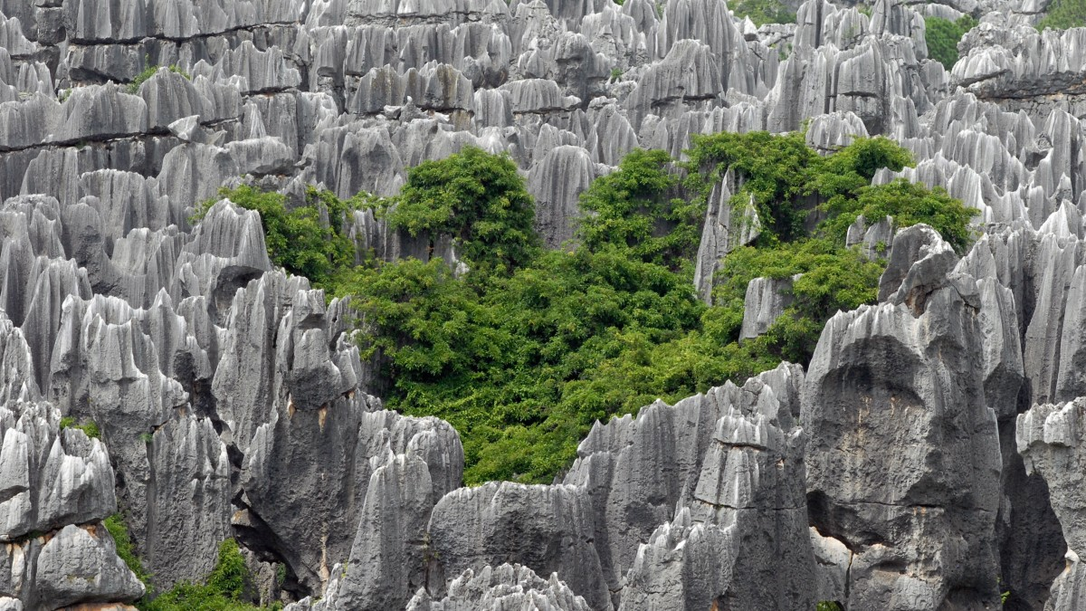 Bosque de piedra Shilin en China